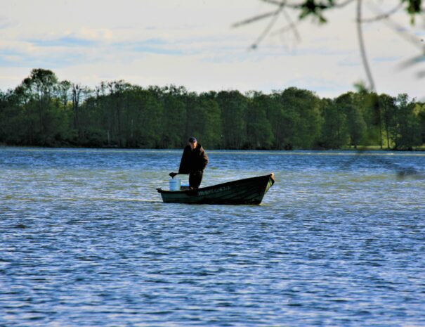 jezioro Sominy Kaszuby ryby