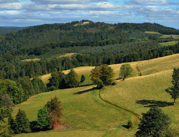 wzgorza-kaszuby-park-krajobrazowy